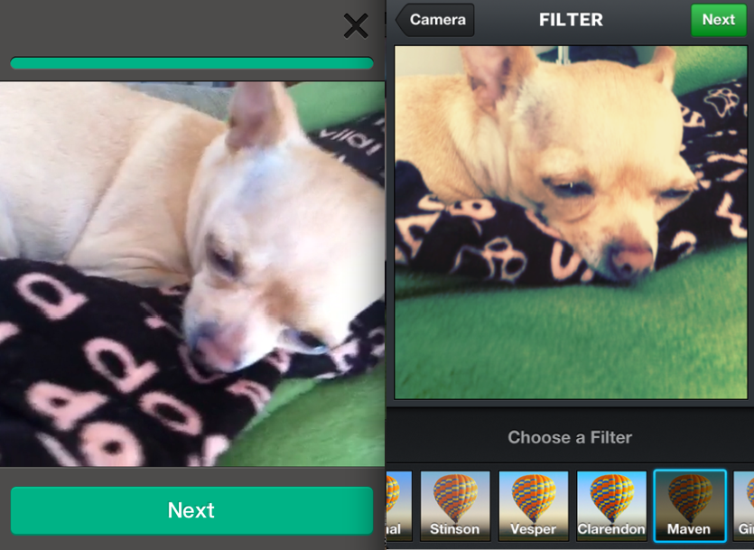 Vine vs Instagram: Video-sharing battle starts with a snap