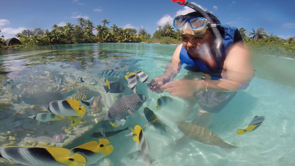 Grafting corals in the clear-blue lagoon is among the endless activities in the tropical paradise at the Four Seasons Bora Bora.